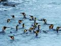 07_Juli_21_Antarctica